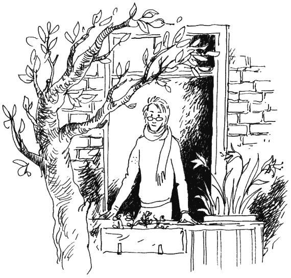 Обложка книги софья прокофьева ученик волшебника