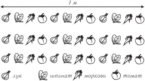 Рис. 1. Порядок высева культур