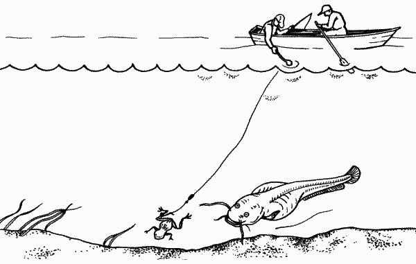 Рис. 44. Ловля сома на квок